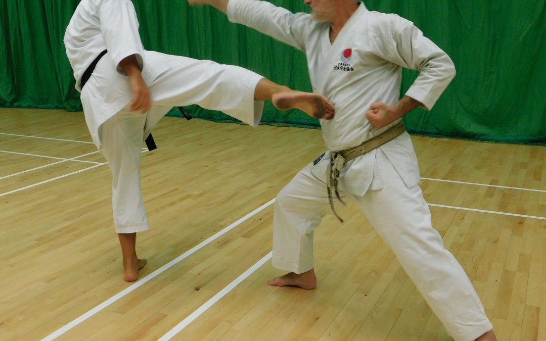 Karate Kicks with Sensei Dave Paulus