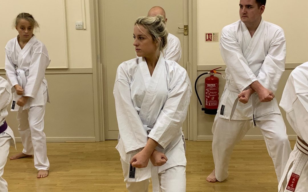 New karate student: Emily's first few months training