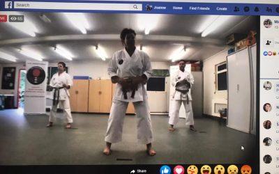 Sensei Miranda on Karate@Home